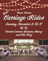Carriage Rides Red with colored lights reduced